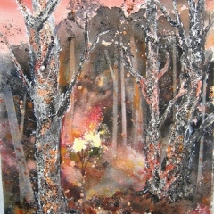 Bushfire 21x15in Sold