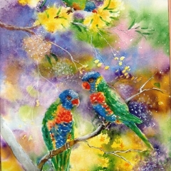 Rainbow Lorikeets 21x14in UF.