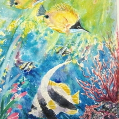 "yvonne west angelfish watercolour 21x14"" uf"
