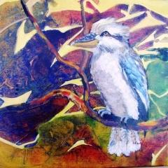 Kookaburra-1
