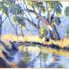 Macquarie River 1