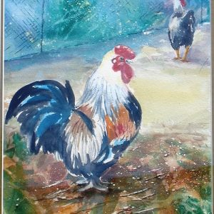 rooster rivalry watercolour yvonne west