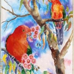 King-Parrots.