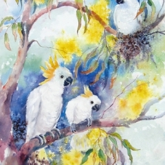 """yvonne west Cheeky Cockatoos watercolour 22x17"""" sold"""