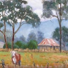 Hawkesbury Mists
