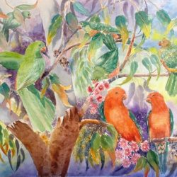 seven king parrots yvonne west
