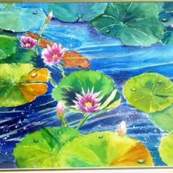 waterlily pond yvonne west