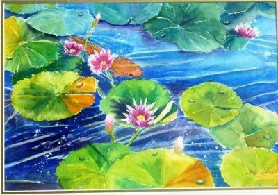 waterlily pond yvonne west